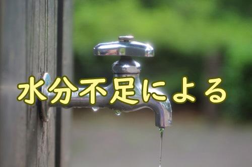水分不足によるもの